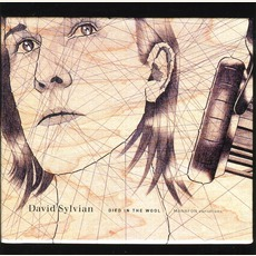 Died In The Wool: Manafon Variations mp3 Album by David Sylvian