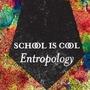 Entropology