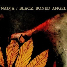 Nadja / Black Boned Angel