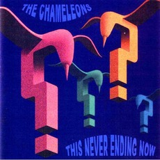 This Never Ending Now mp3 Album by The Chameleons