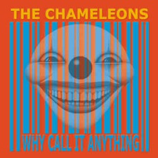 Why Call It Anything? mp3 Album by The Chameleons