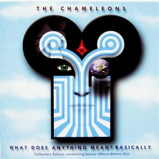 What Does Anything Mean? Basically (Collectors Edition) by The Chameleons