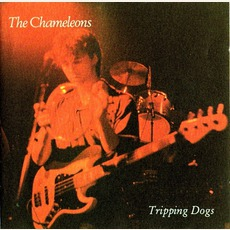Tripping Dogs mp3 Live by The Chameleons