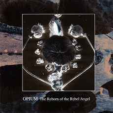 The Reborn Of The Rebel Angel
