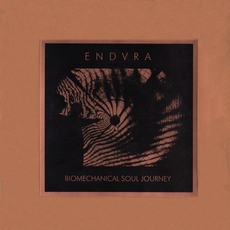 Biomechanical Soul Journey (Limited Edition)