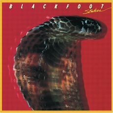 Strikes mp3 Album by Blackfoot