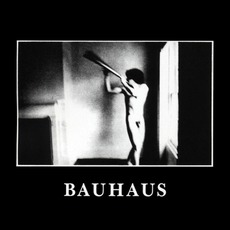 In The Flat Field (Re-Issue) by Bauhaus