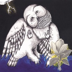 The Magnolia Electric Co. mp3 Album by Songs: Ohia