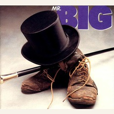 Mr. Big (Remastered) mp3 Album by Mr. Big