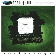 Raw Power: Surfacings Vol.1 mp3 Album by Trey Gunn