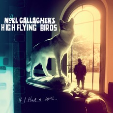 If I Had A Gun… by Noel Gallagher's High Flying Birds