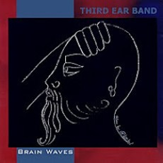 Brain Waves mp3 Album by Third Ear Band