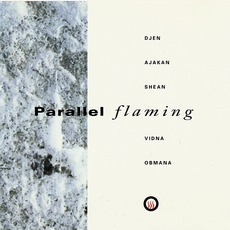 Parallel Flaming by Vidna Obmana & Djen Ajakan Shean