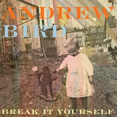Break It Yourself mp3 Album by Andrew Bird