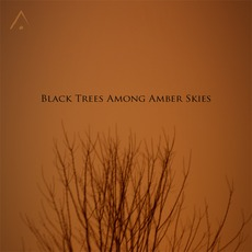 Black Trees Among Amber Skies