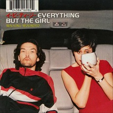 Walking Wounded mp3 Album by Everything but the Girl