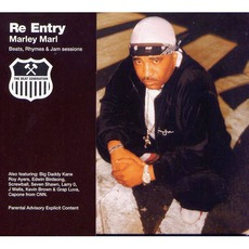 Re-Entry mp3 Album by Marley Marl