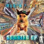 Dumbing Up (Re-Issue)