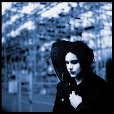 Blunderbuss mp3 Album by Jack White