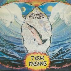 Fish Rising mp3 Album by Steve Hillage