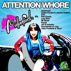 Attention Whore (Melleefresh vs 10 DJs)