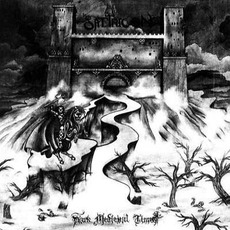 Dark Medieval Times mp3 Album by Satyricon