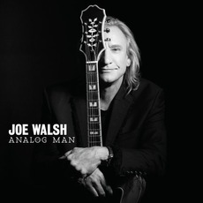 Analog Man mp3 Album by Joe Walsh