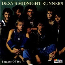 Because Of You mp3 Artist Compilation by Dexys Midnight Runners