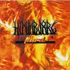 Third mp3 Album by Himinbjorg