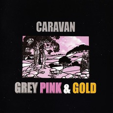 Grey Pink & Gold by Caravan