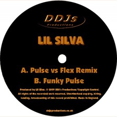 Pulse Vs Flex Remix mp3 Single by Lil Silva
