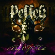 Bag Of Tricks mp3 Album by PelleK