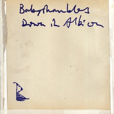 Down In Albion by Babyshambles