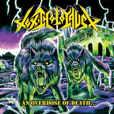 An Overdose Of Death... mp3 Album by Toxic Holocaust