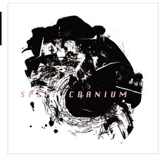 Split Cranium mp3 Album by Split Cranium