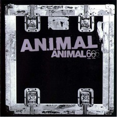 Animal 6