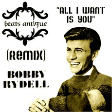 All I Want Is You mp3 Remix by Beats Antique