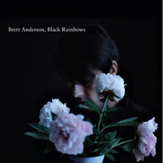 Black Rainbows by Brett Anderson
