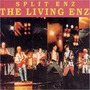 The Living Enz (Re-Issue)