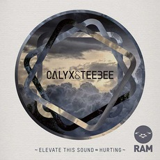 Elevate This Sound / Hurting mp3 Single by Calyx & Teebee