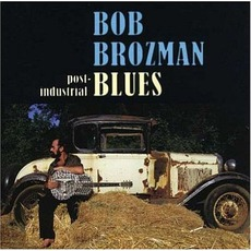 Post-Industrial Blues mp3 Album by Bob Brozman