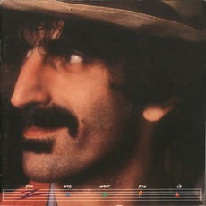You Are What You Is (Re-Issue) mp3 Album by Frank Zappa