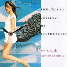 The Secret Society Of Butterflies mp3 Album by Blonde Redhead
