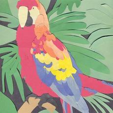 Parrot Flies by Algernon Cadwallader