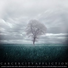 Affliction mp3 Album by Carcer City