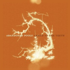 Armed To The Teeth mp3 Album by Abandoned Pools