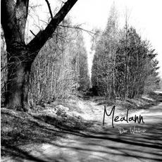 Der Wanderer by Mealann