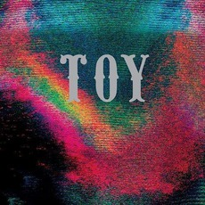 TOY (Rough Trade Exclusive) mp3 Album by TOY