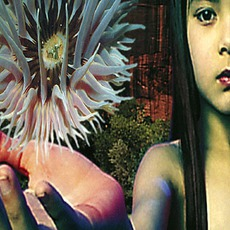 Lifeforms mp3 Album by The Future Sound Of London