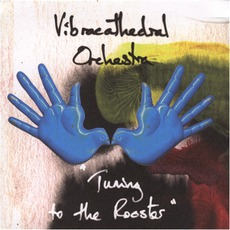 Tuning To The Rooster mp3 Album by Vibracathedral Orchestra